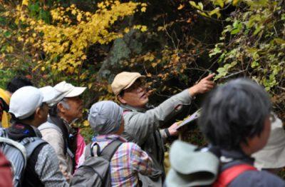 小泉山のんびり植物観察会&植物観察法講座