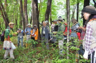 第4回 八ヶ岳講座<原村の樹木~樹木観察基本講座 第1回>