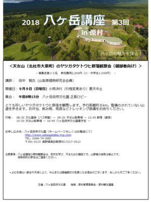 天女山(北杜市大泉町)のヤツガタケトウヒ群落観察会(健脚者向け)